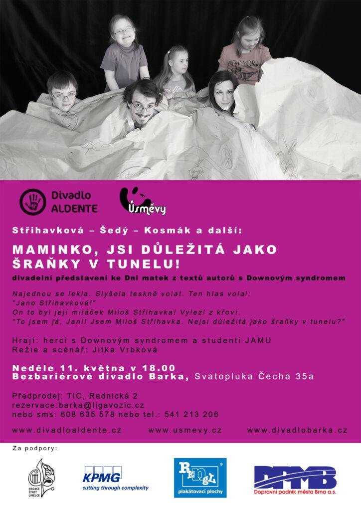 Divadelní projekt lidí s Downovým syndromem Maminko, jsi důležitá jako šraňky v tunelu!