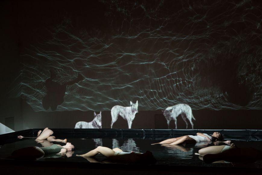 Nejlepší taneční inscenace roku 2015 zkoumá fenomén sociální izolace