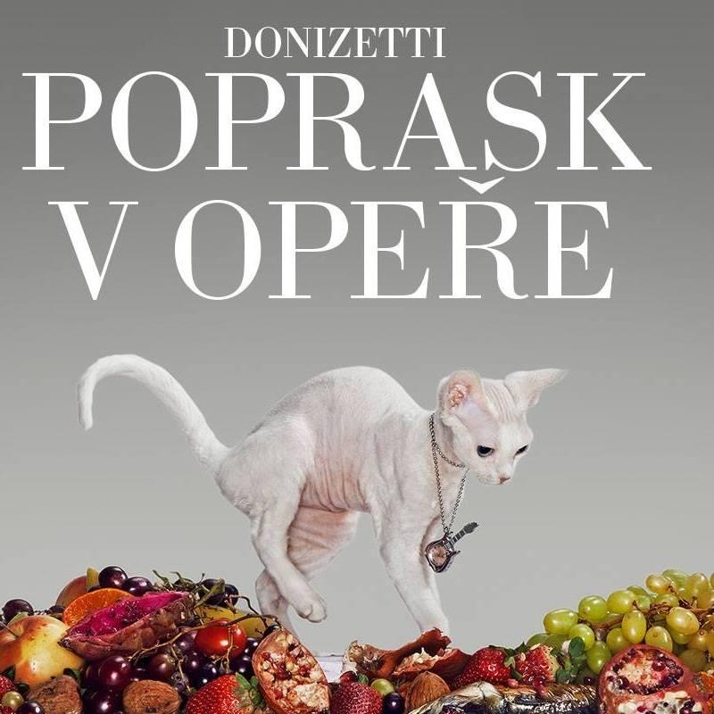 Donizettiho opera se vrací do repertoáru Národního divadla