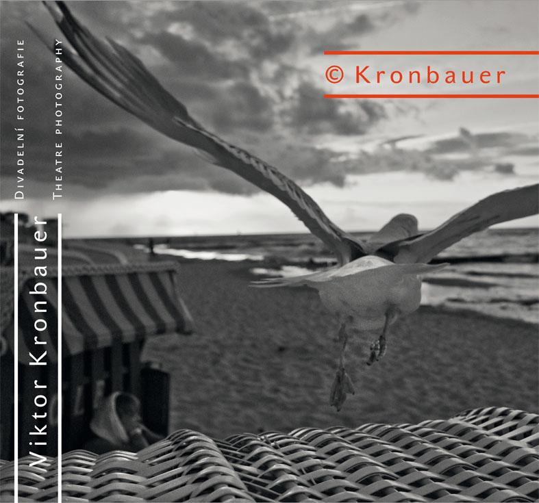 Vychází rozsáhlá monografie Viktora Kronbauera
