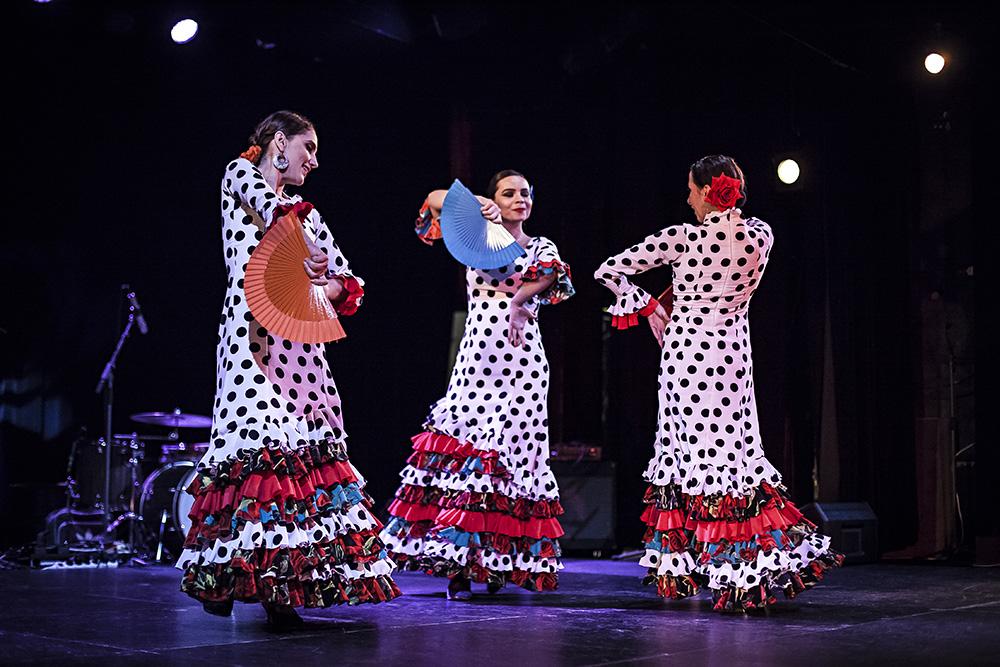 Festival Den flamenka 2019