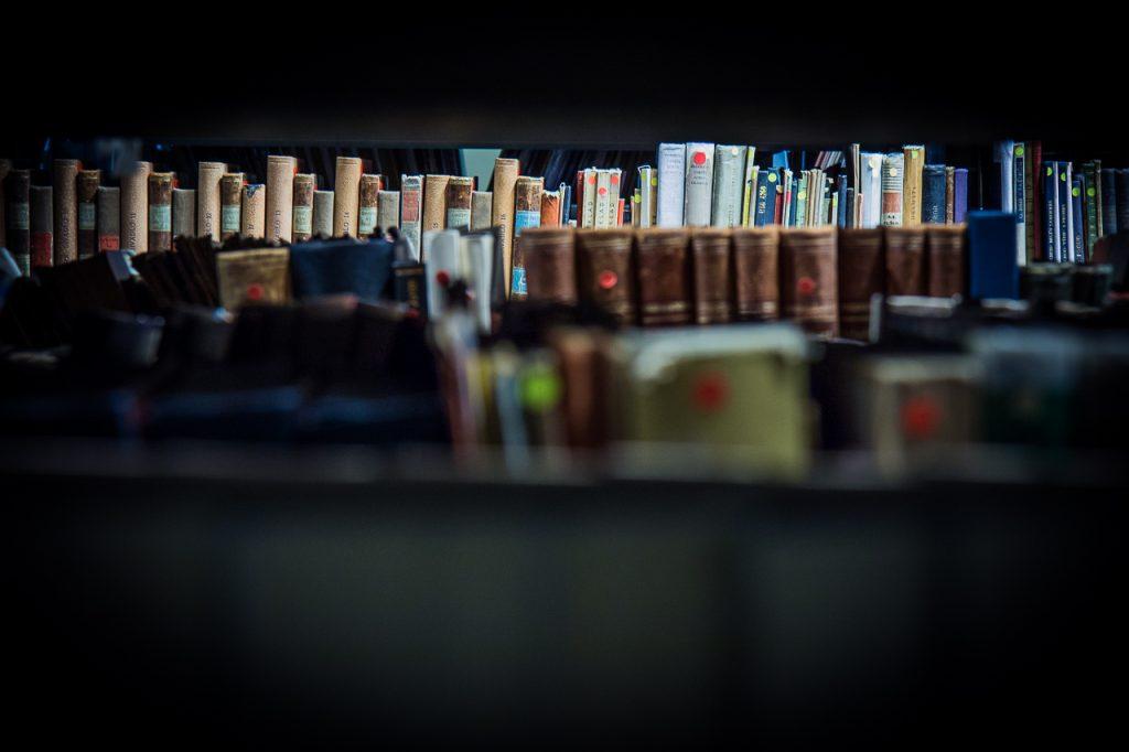 Přírůstky zahraniční literatury v Knihovně DÚ za rok 2019